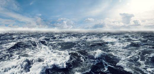 Ozeanversauerung: Böser kleiner Bruder der Erderwärmung