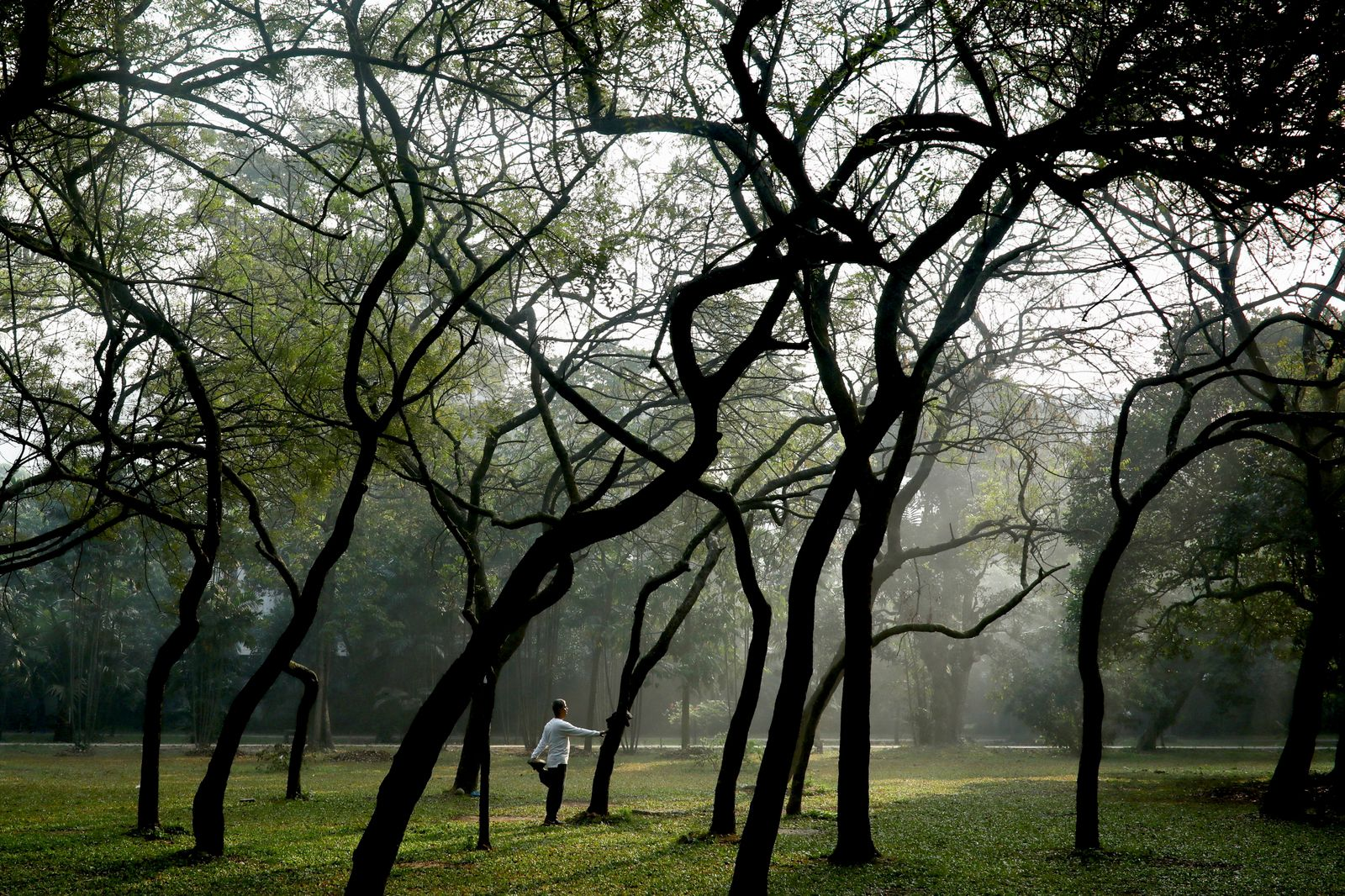 A man does morning exercise at the Ramna Park in Dhaka