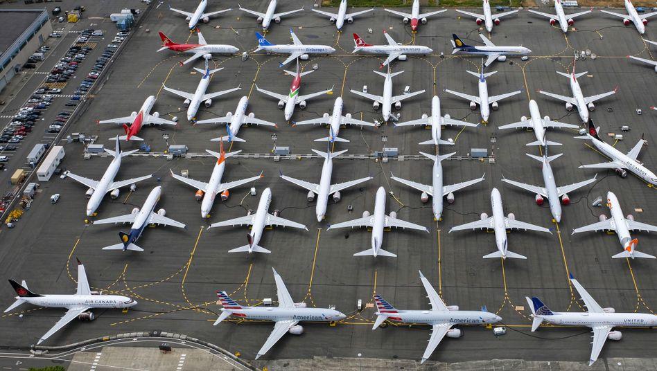 Geparkte 737-Max-Jets auf dem Boeing Field in Seattle: Seit März 2019 darf dieser Flugzeugtyp nicht mehr abheben