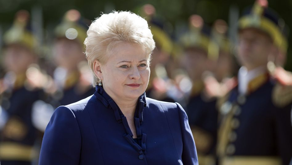 Lithuanian President Grybauskaite in 2012. 'I won't name countries, but reforms could be quicker in many parts' of Europe, she says.