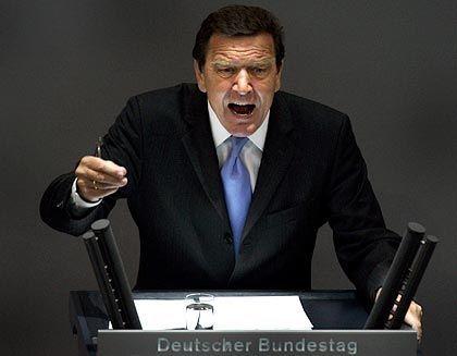 Kanzler Schröder im Bundestag: Entwertete Worte durch Übersetzungsfehler