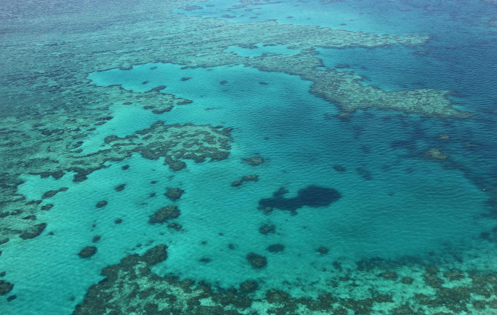 Great Barrier Reef / Hafenausbau