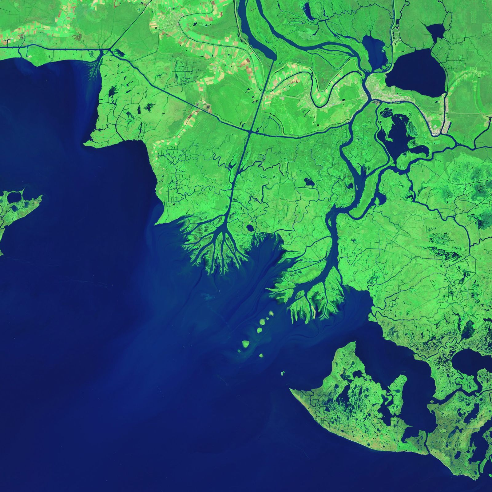 Growing Deltas in Atchafalaya Bay