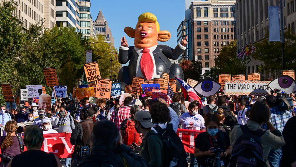 Noch ist er nicht weg: Demonstranten in Washington bejubeln Trumps Wahlniederlage