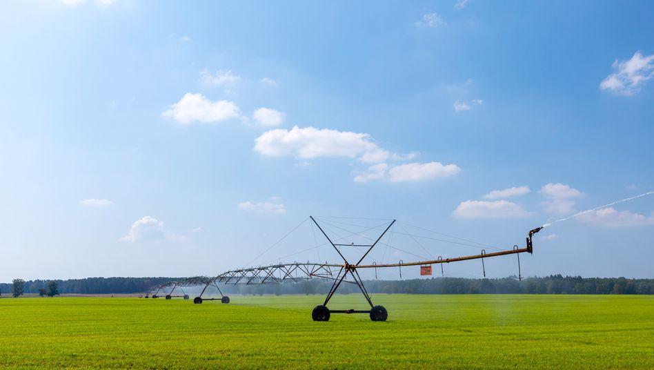 Felder-Bewässerung in Pinnow, Brandenburg