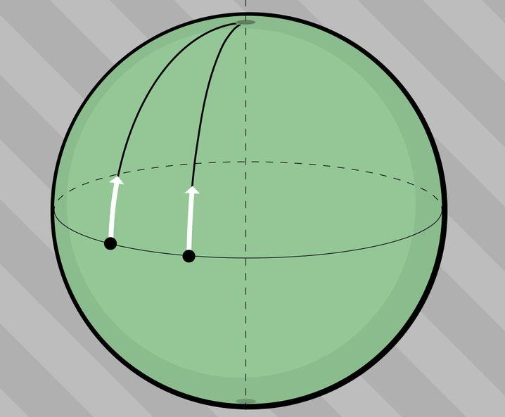 Gekrümmter zweidimensionaler Raum: Anfangs parallel, dann nicht mehr