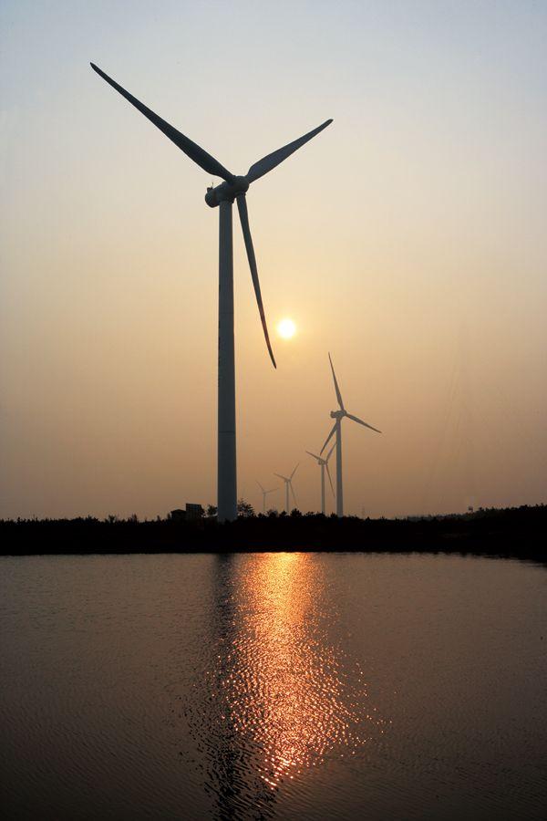 """Windpark: Atomkraft als """"energiepolitischer Irrweg"""""""