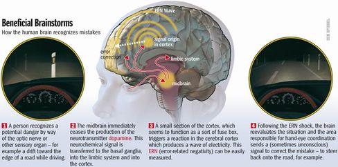 How your brain advertises errors.