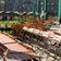 Coronakrise kostet Gastwirte 17,6 Milliarden Euro Umsatz