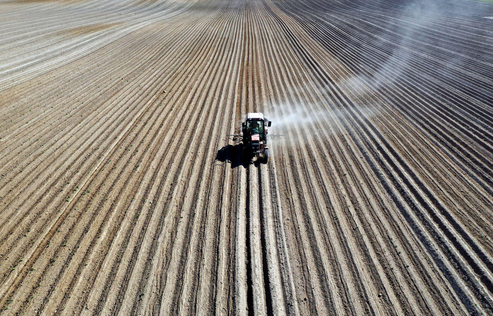 Landwirtschaft Biohof Muenchenberge, DEU, 20.05.2020 - Durch die anhaltende Trockenheit zieht ein Traktor bei der Bearb