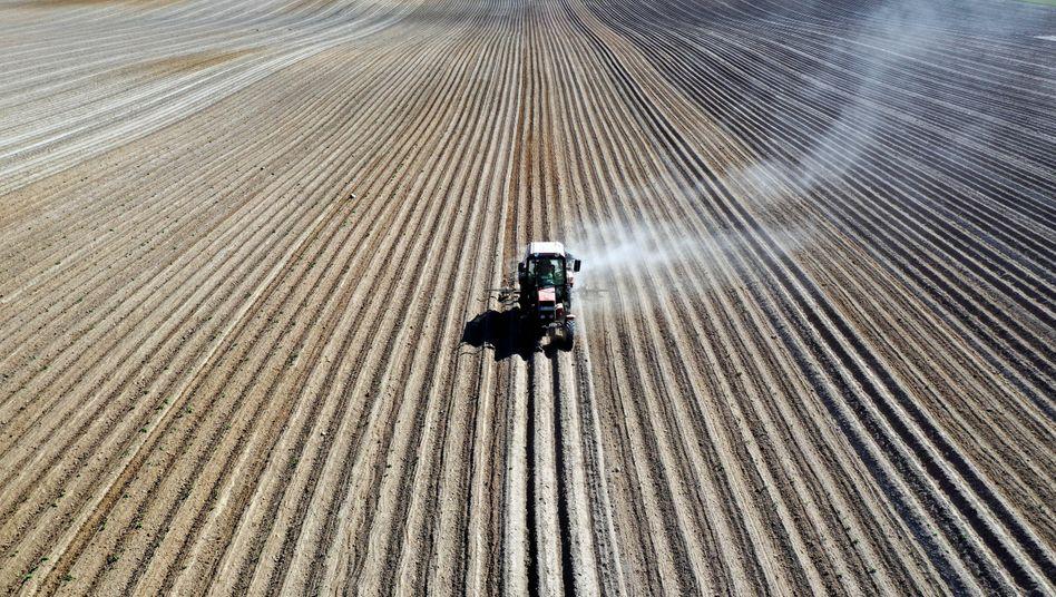Traktor auf trockenem Kartoffelfeld: Gefährliches Zusammenspiel von extremer Dürre und Hitze