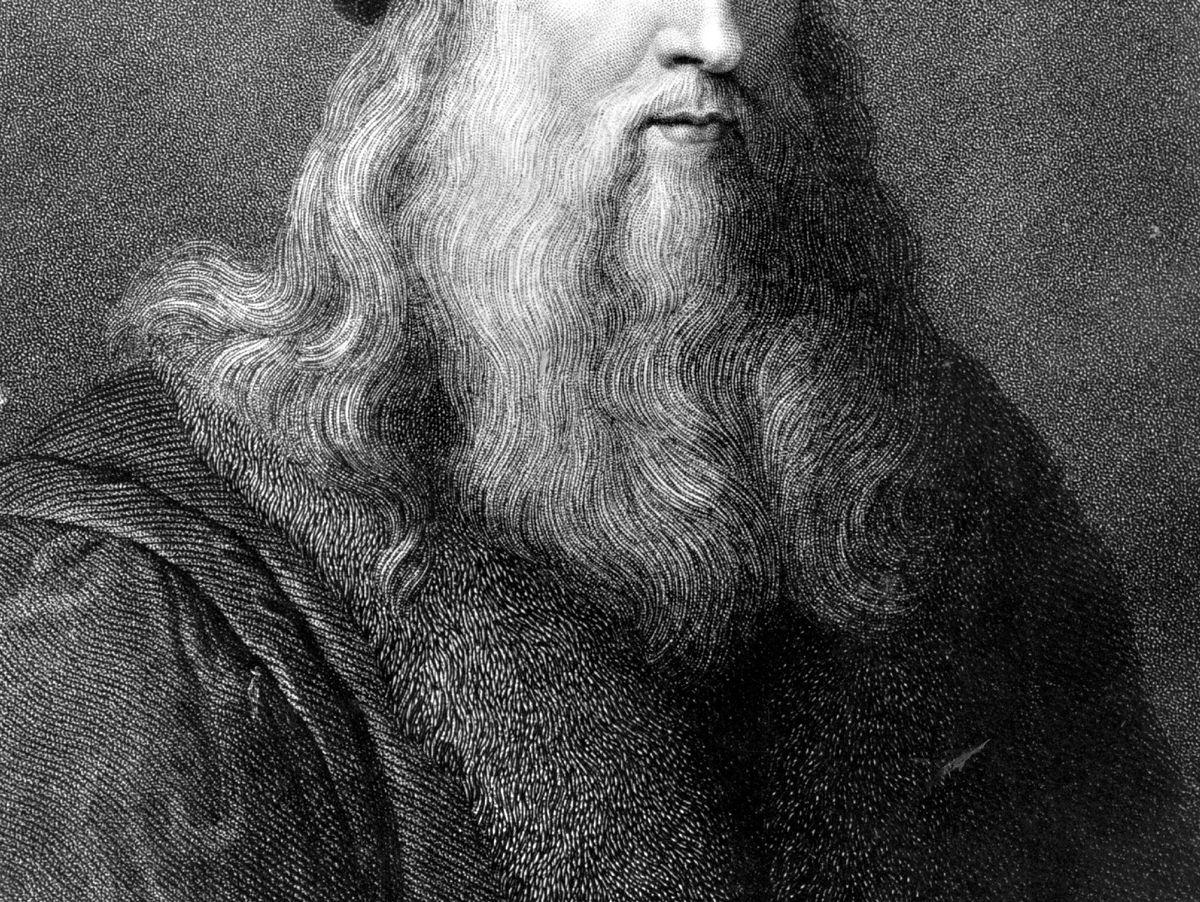 Leonardo da Vinci Forscher finden lebende Nachkommen   DER SPIEGEL