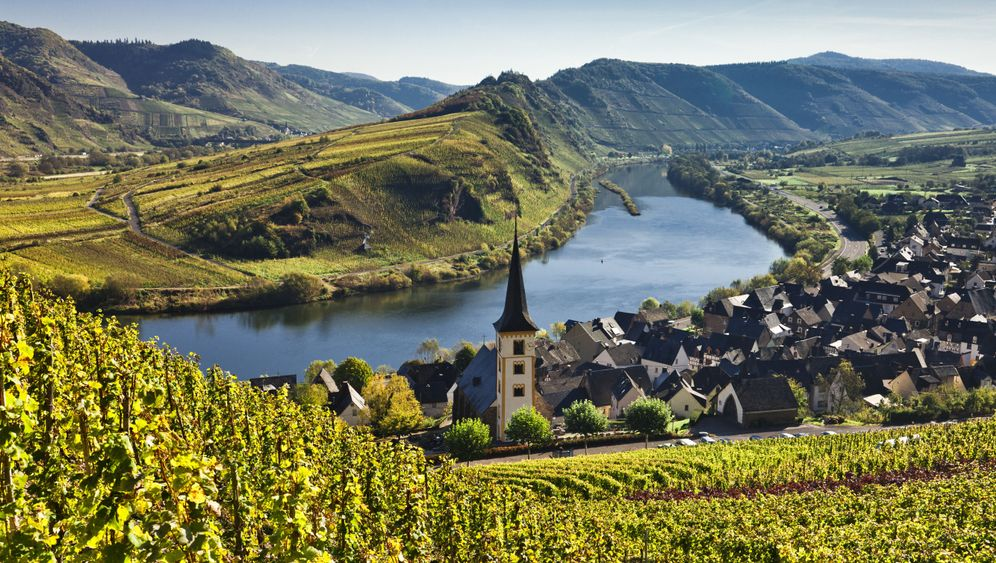 Photo Gallery: The Steep Challenges of German Vineyards