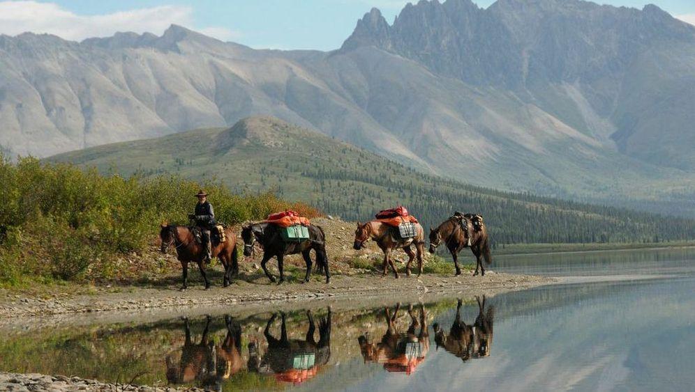 Amerika per Pferd: Von Feuerland bis Alaska