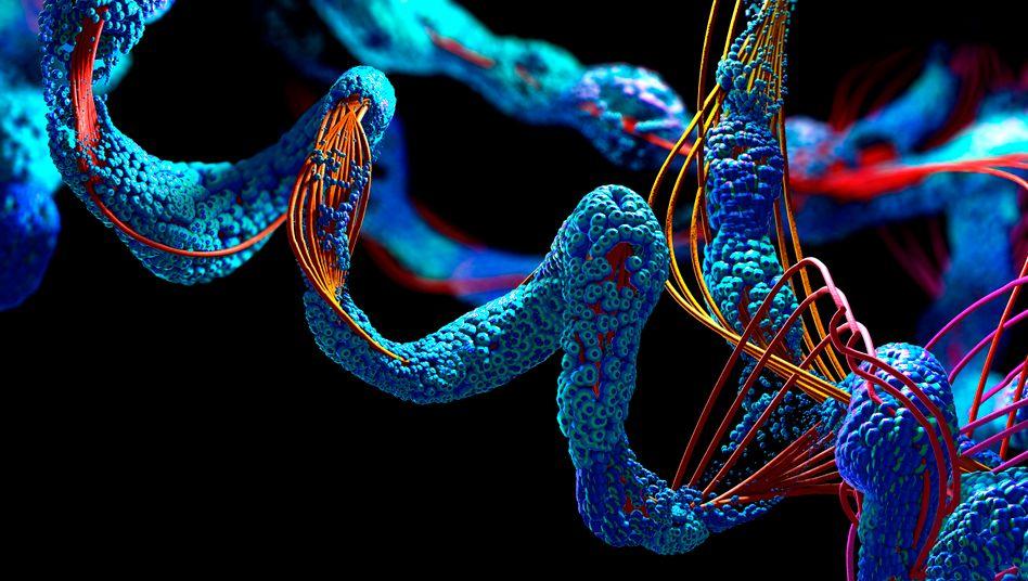 3D-Illustration eines Proteins (Symbolbild)
