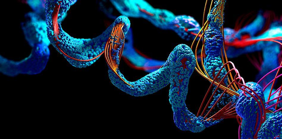 Dreidimensionale Struktur eines Proteins (Illustration)
