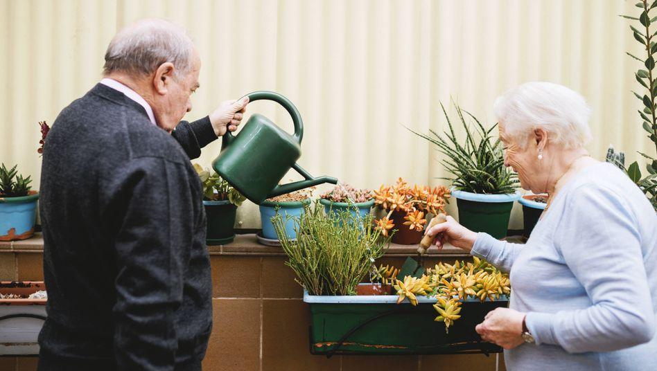 Senioren beim Gärtnern
