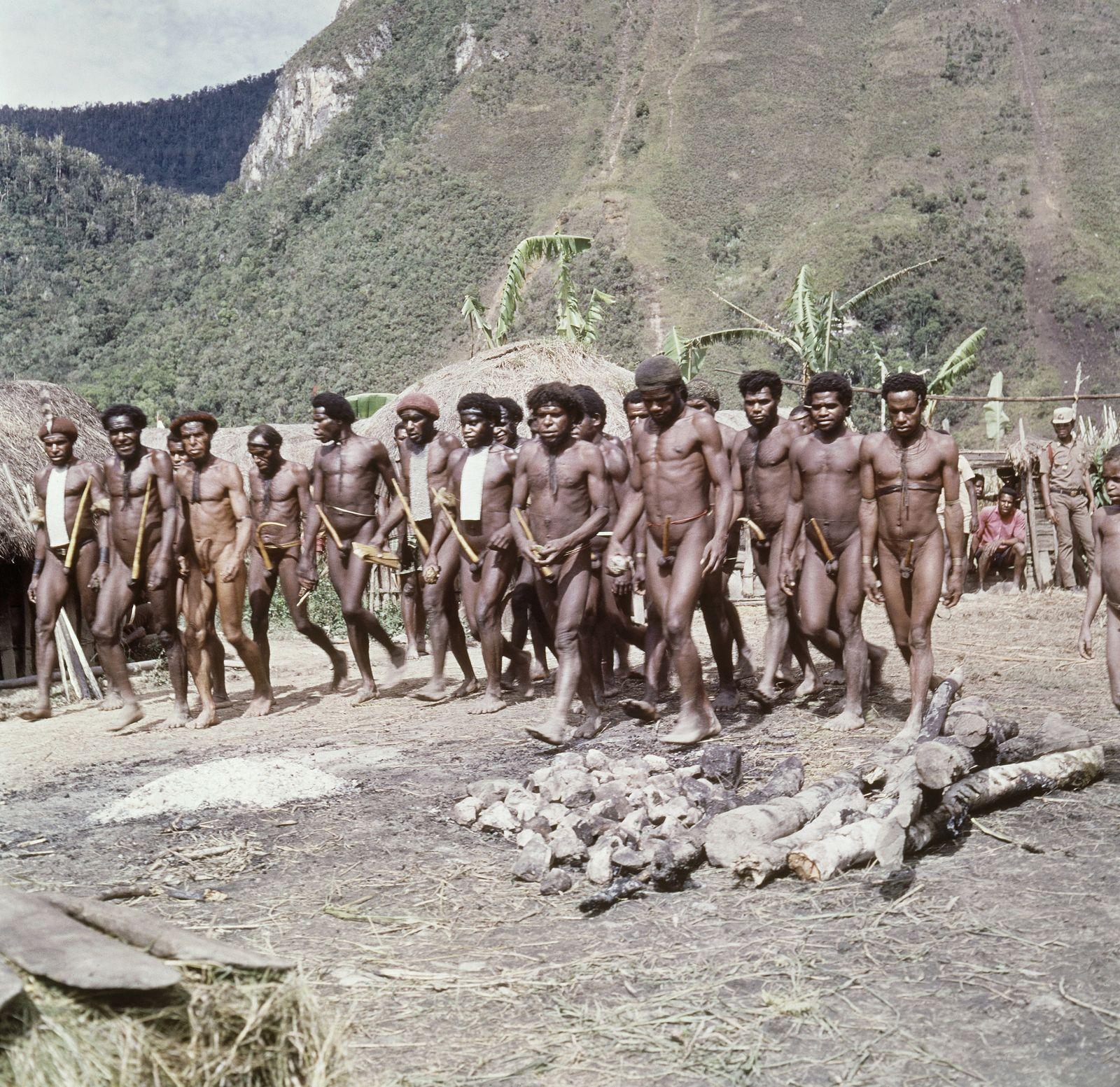Dani Tribe / Papua / Indianer