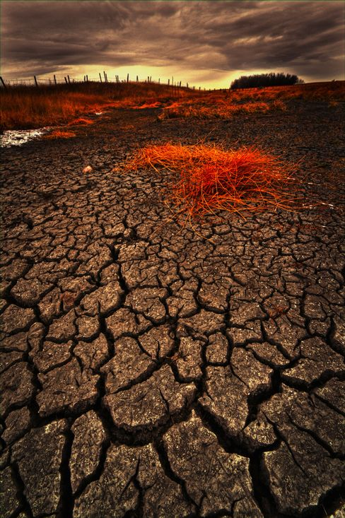 Trockenheit: Mittelmeerstaaten könnten Subtropenklima bekommen