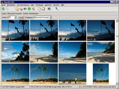 Pixelfahnder: Das Programm ThumbsPlus spürt Dateien mit ähnlichen Strukturen und Farben auf