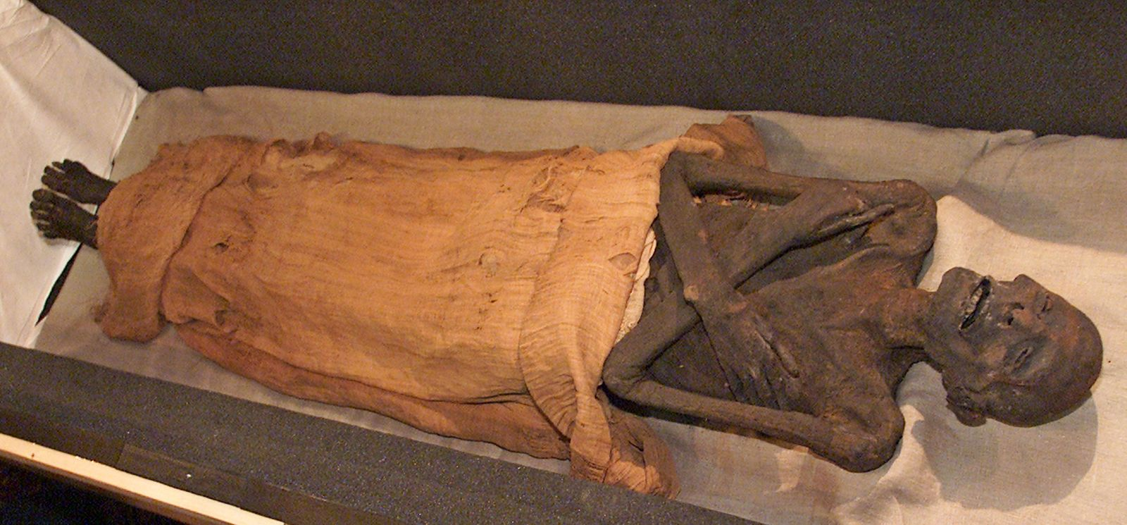 EGYPTIAN MUMMY ON DISPLAY AT THE CAIRO MUSEUM.