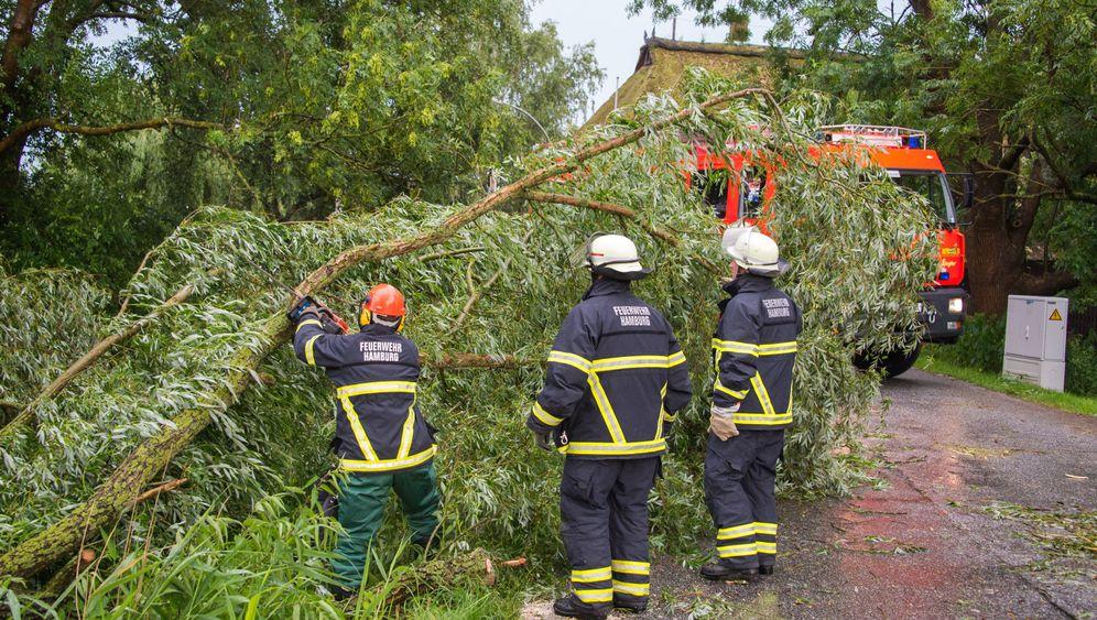 Unwetter: Umgestürzte Bäume, gesperrte Bahnstrecken