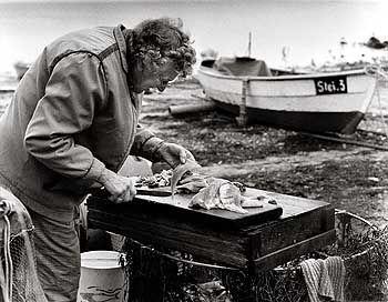 Filetiert und verkauft wird am Strand. Meist hilft Gattin Gerda, 80 Jahre