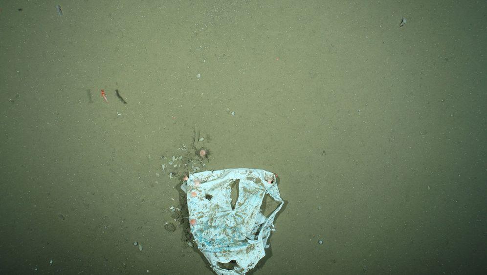 Plastikabfall: Müll im Meer
