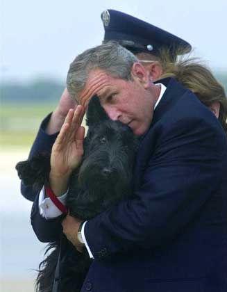 """Bush mit Hund """"Barney"""" beim Salut-Versuch: Wer wirkt netter?"""