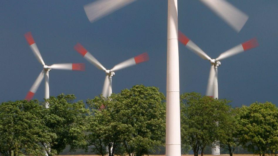 Windpark in Nordvorpommern: 16,3 Prozent des Stroms stammt aus Erneuerbaren Energien