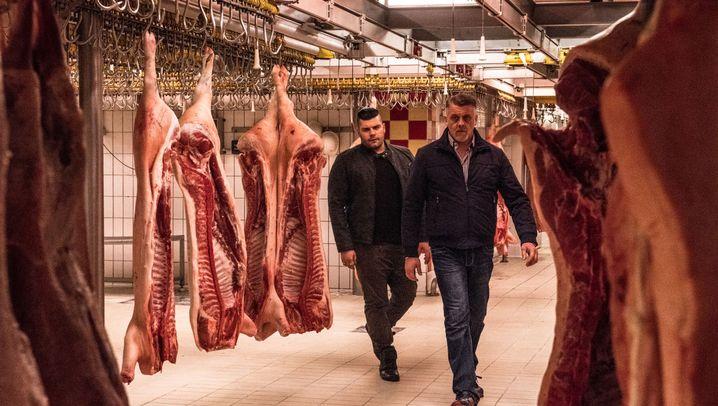Mafia-Serie auf Sky: Leben im Schlachthof