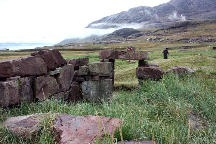 Wikinger-Ruine in Grönland (am Igaliku-Fjord): Seehundfleisch im Überfluss
