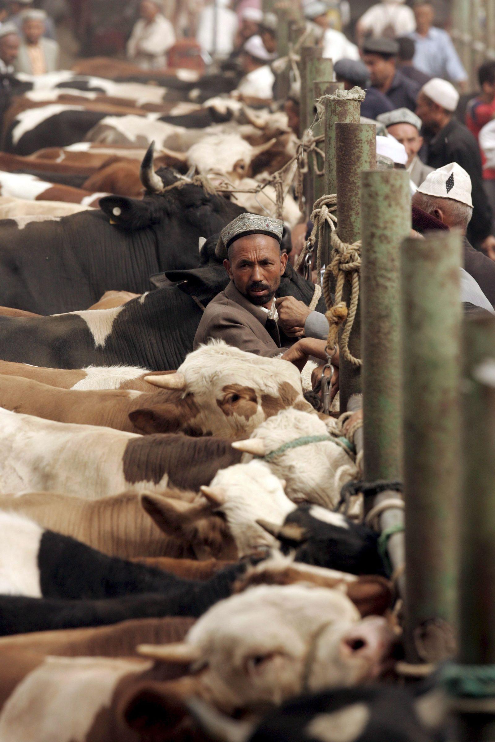 EINMALIGE VERWENDUNG Fleischkonsum/ China/ Weltklimabelastung