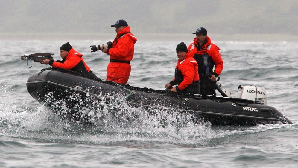 Photo Gallery: Putin Takes on a Whale