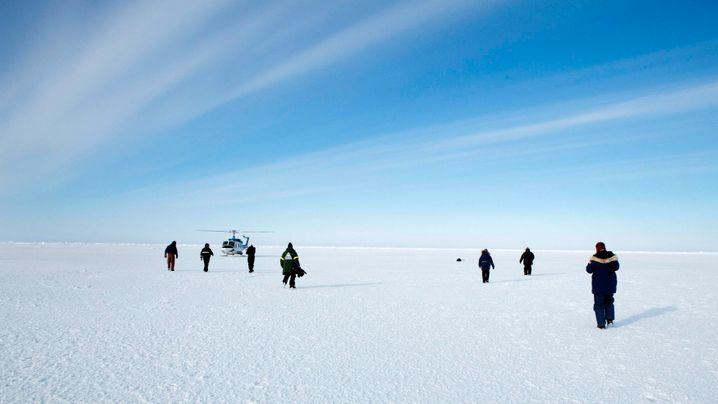 Arktis: Eisiger Norden