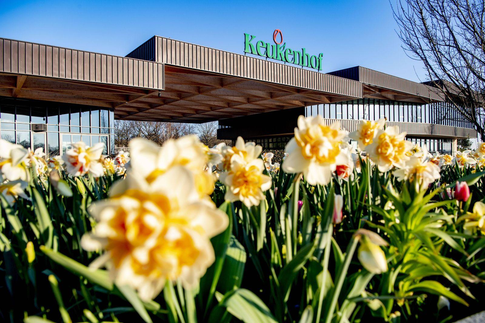 2020-04-06 09:07:11 LISSE - Bloemen in bloei bij leeg Keukenhof , de keukenhof gaat die jaar niet meer open ivm de coron