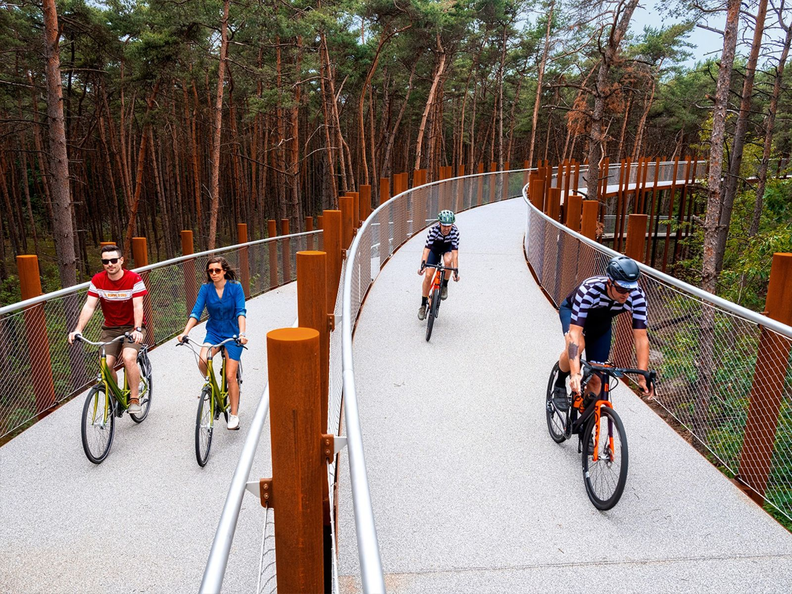 Dezeen Awards 2020 Cycling through the Trees by Visit Limburg