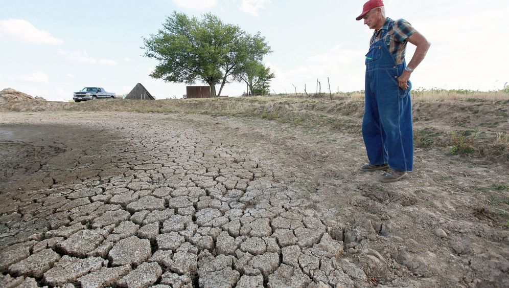 Photo Gallery: A Drought-Induced Bottleneck