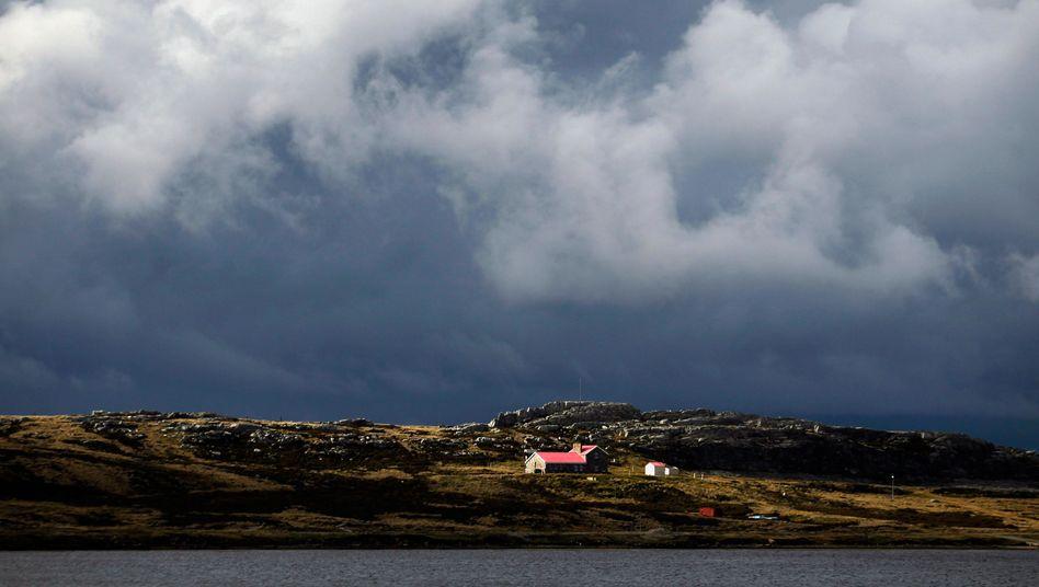 Falklandinseln im südlichen Atlantik: Die Inselgruppe gehört seit 1833 zu Großbritannien