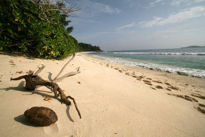 Seychellen, Insel Praslin