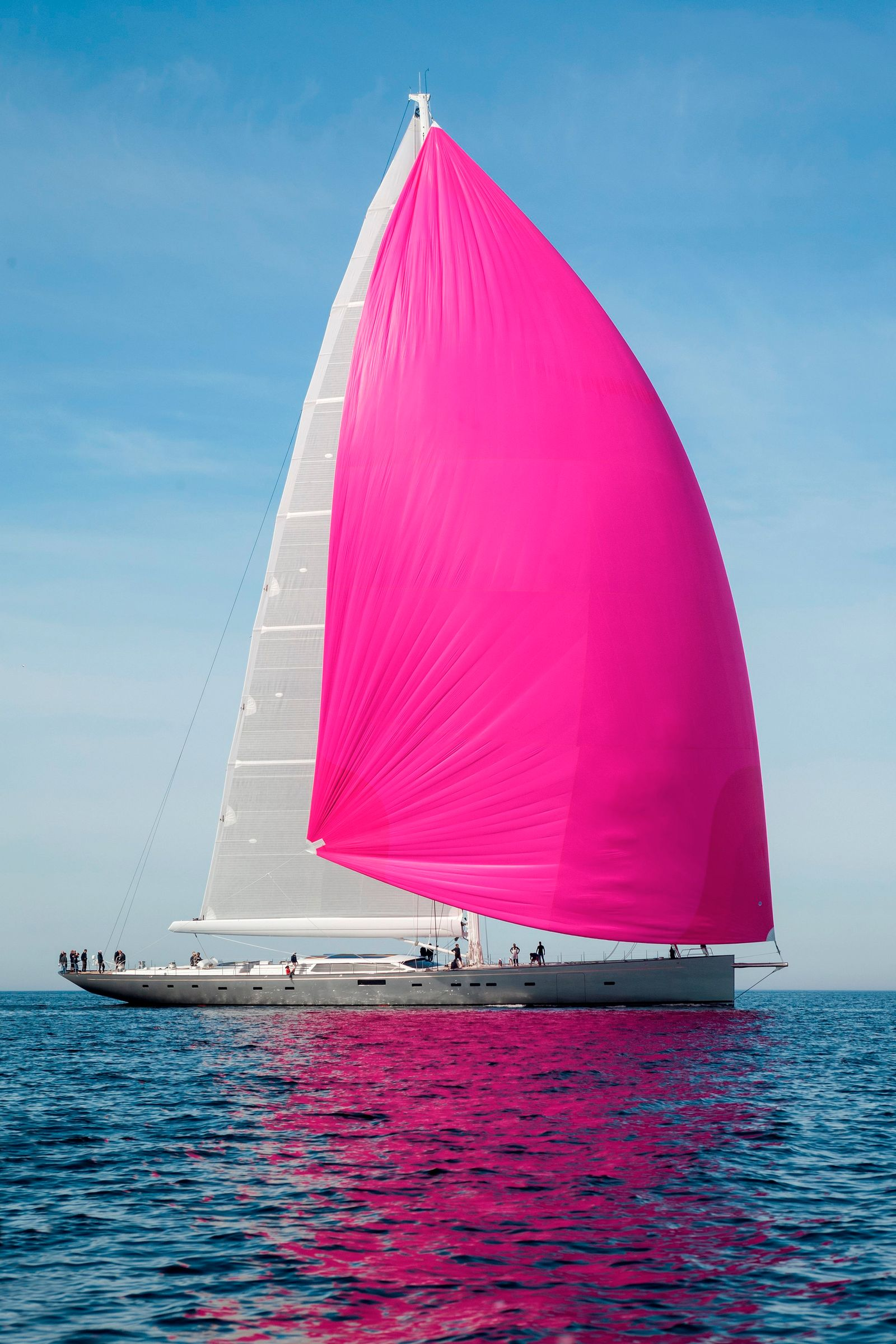Pink Gin sailing yacht of the year