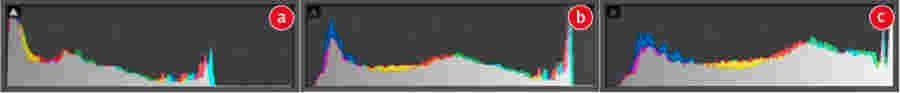 """Der linke Bildausschnitt (a) ist unterbelichtet: Am linken Rand werden Schatten bereits beschnitten, während rechts wertvoller Belichtungsspielraum verschenkt wird. Beim nachträglichen Aufhellen führt das zu sichtbarem Rauschen. Im mittleren Bildausschnitt (b) wird korrekt """"nach rechts"""" belichtet: So hell wie möglich, ohne dass es zu einem nennenswerten Clipping in den Schatten oder Lichtern kommt. Im rechten Bildausschnitt (c) werden Lichter beschnitten. Achtung: Das KameraHistogramm kann hier täuschen, da es auf dem JPEG-Algorithmus der Kamera basiert. Je nach Kamera kann das Raw-Format noch Reserven in den Lichtern haben, so dass dies sogar die optimale Belichtung sein könnte."""