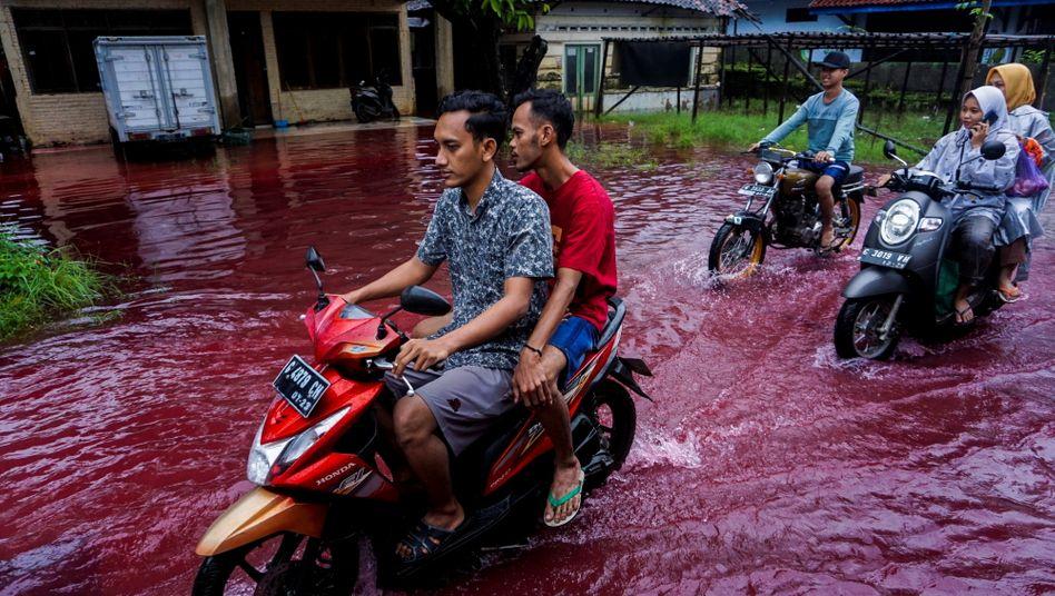 Aufnahme aus Jenggot auf Java: Heute rotes Wasser – neulich grün