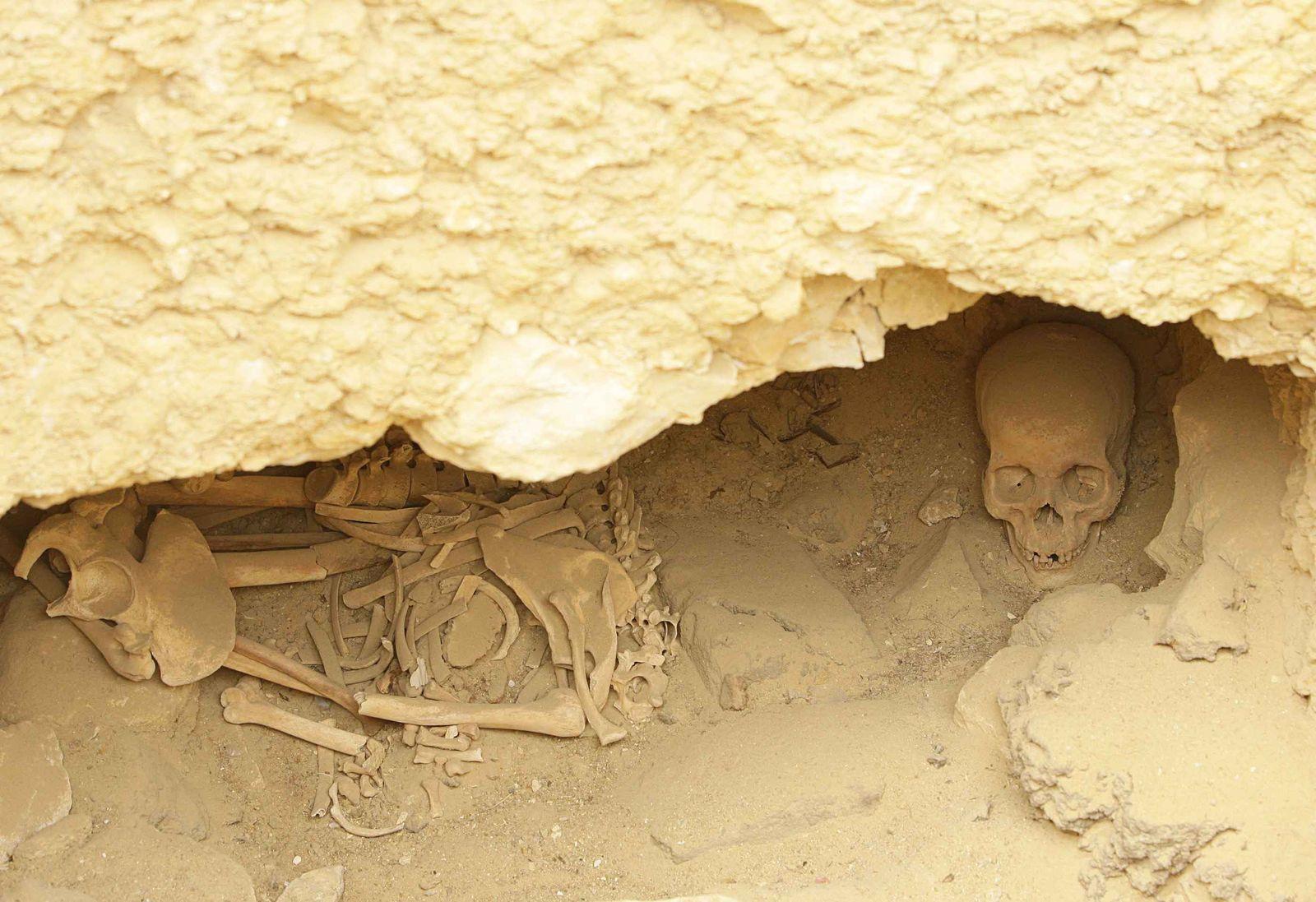 Ägypten / Knochenfund