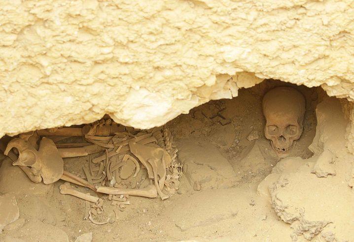 Knochen neben der Cheops-Pyramide: In Ägypten gab es offenbar freiwillige Sklaven