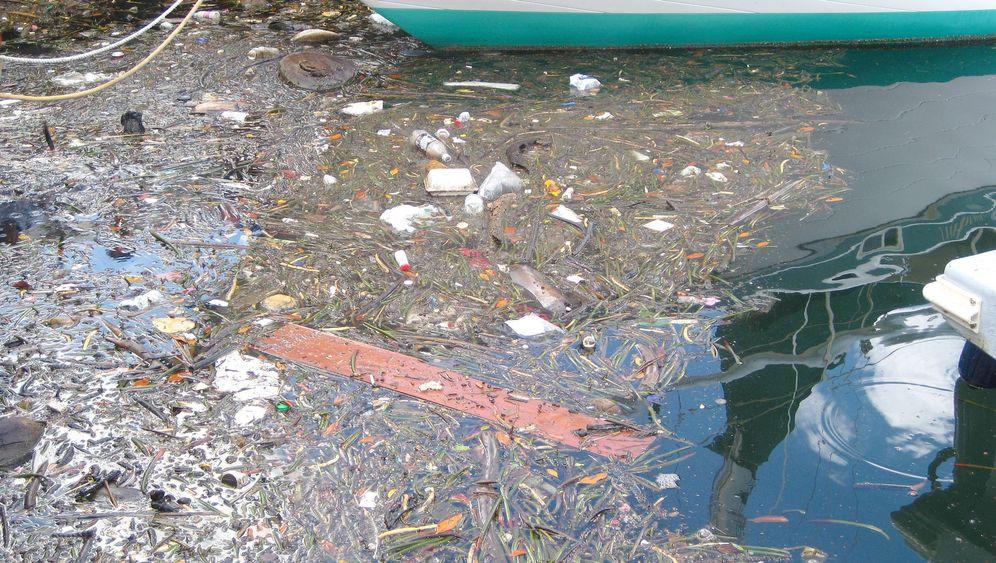 Umwelt: In der Plastikflut