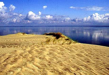 Kurische Nehrung. Blick von den Dünen auf die Ostsee.