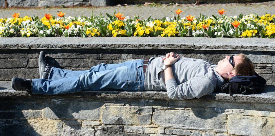 Frühlingspause in Freiburg: Dem Menschen geht es dank Gen besser