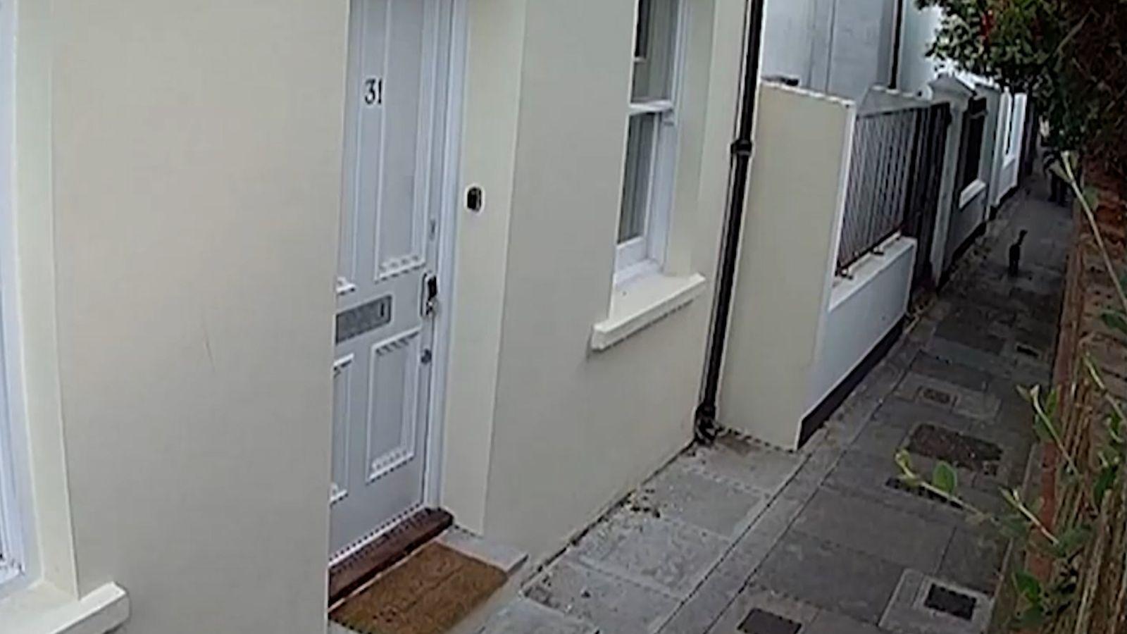 Lange Haft für «Katzenmörder von Brighton»