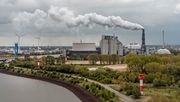Das Kohle-Paradox
